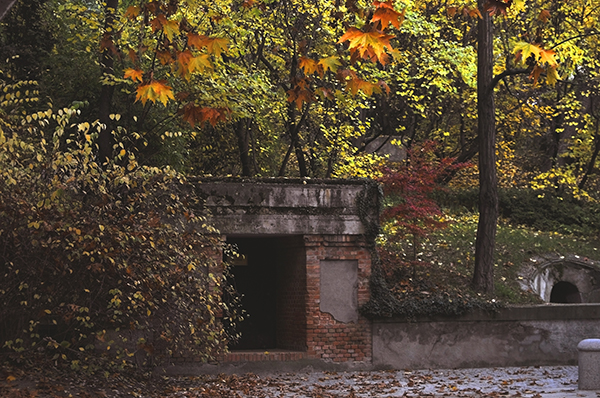 El secreto del Parque del Capricho, Blog Gavirental